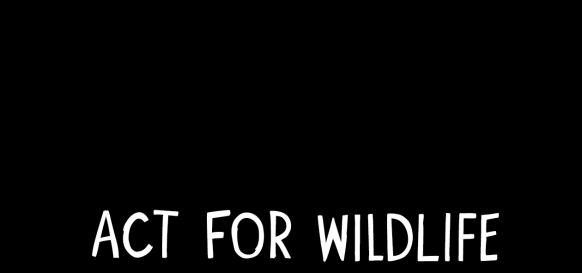 Landscape CZAFW Logo (2)