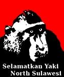yaki by Jurriaan Gillissen
