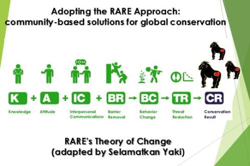 RARE's Theory of Change (adapted by SY)