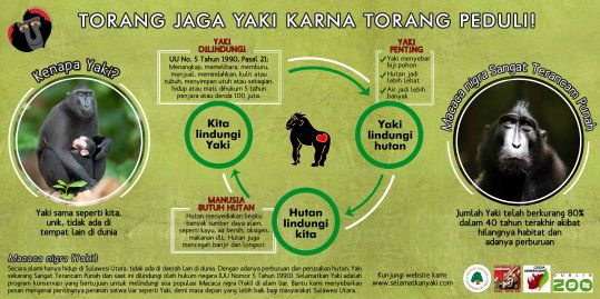 Yaki informasi banner oleh Selamatkan Yaki - tolong Anda cetak dan sebarkan di desa Anda!